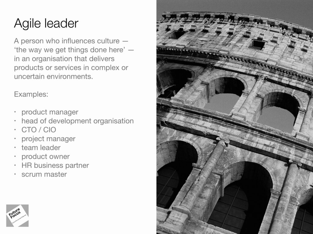 Examples of agile leaders